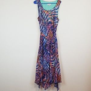Signature Robbie Bee multi color maxi dress